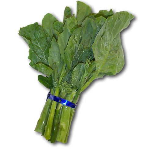 Gai Lan   Anything vegetable   Pinterest