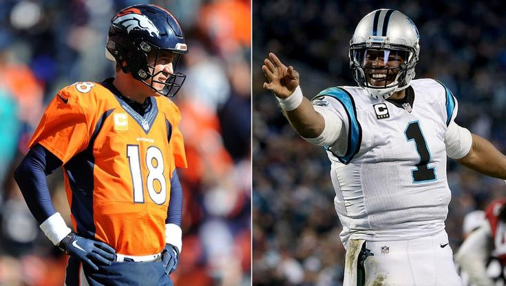 manning_newton_x08gbly2_2d3xvzm5 (1)