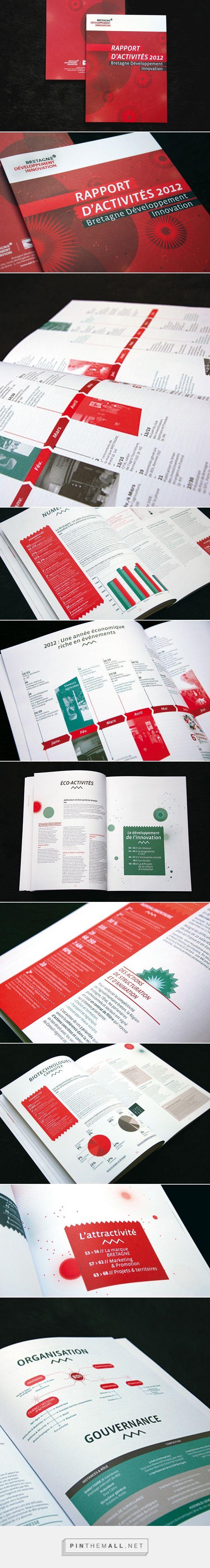 Rapport d'activité de BDI 2012 - © Pollen Studio