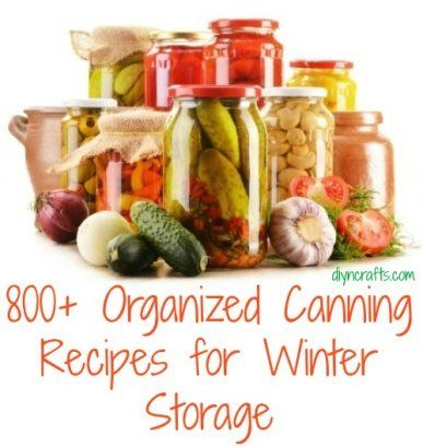 800+ Organized Canning Recipes for Winter Storage -If you have grown a garden this summer or if you simply have an abundance of v...
