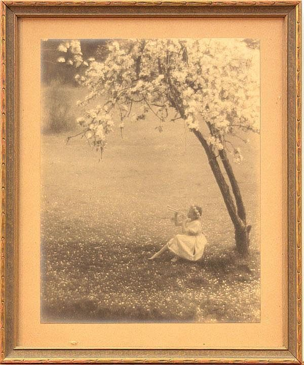 Photograph, John Paul Edwards, Girl Under Tree
