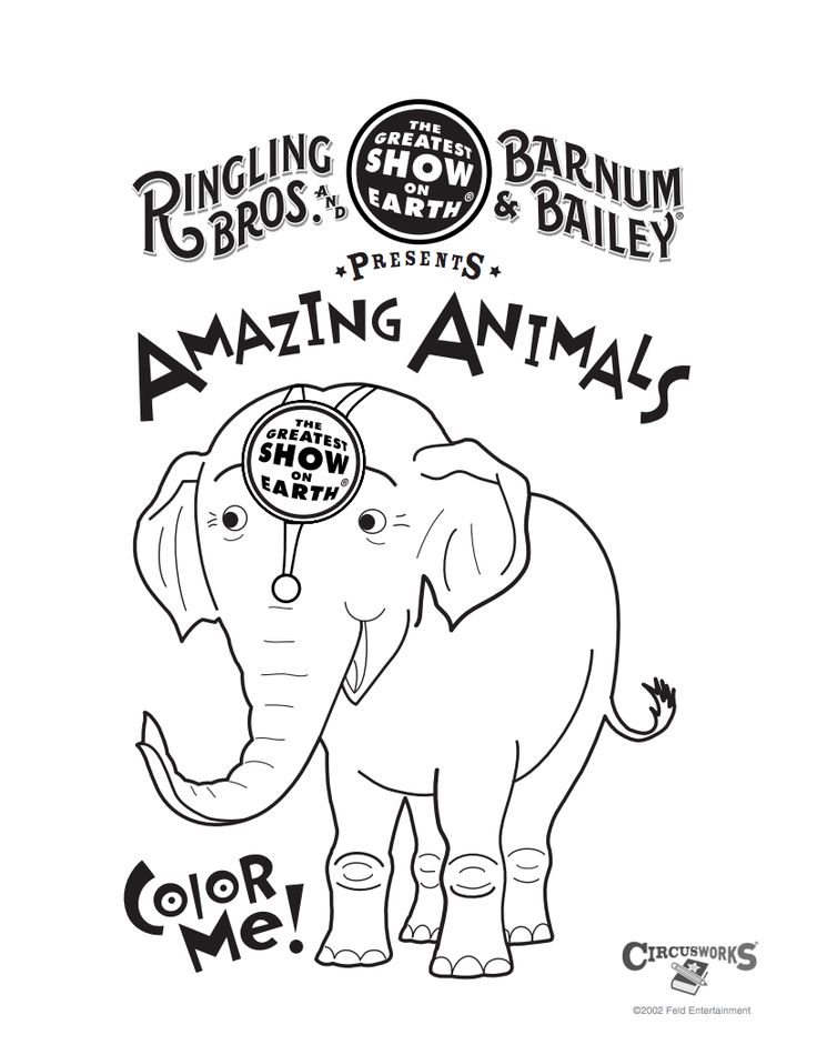 Ringling Bros. and Barnum & Bailey® Presents BUILT TO AMAZE! September 17–20 at Moda Center