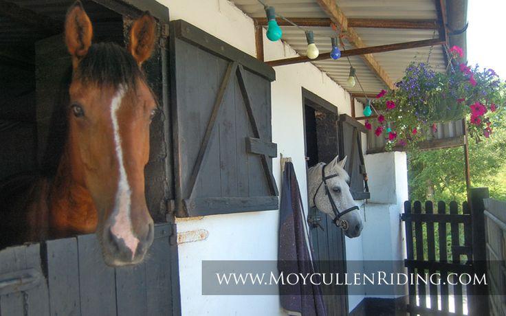 Moycullen Riding Centre stable