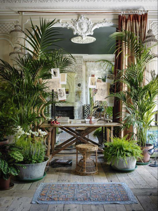 Urban jungle interieur op en top in pand met hoge plafonds en originele ornamenten