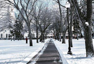 7 Fun Things To Do In Regina This February #regina #thingstodo
