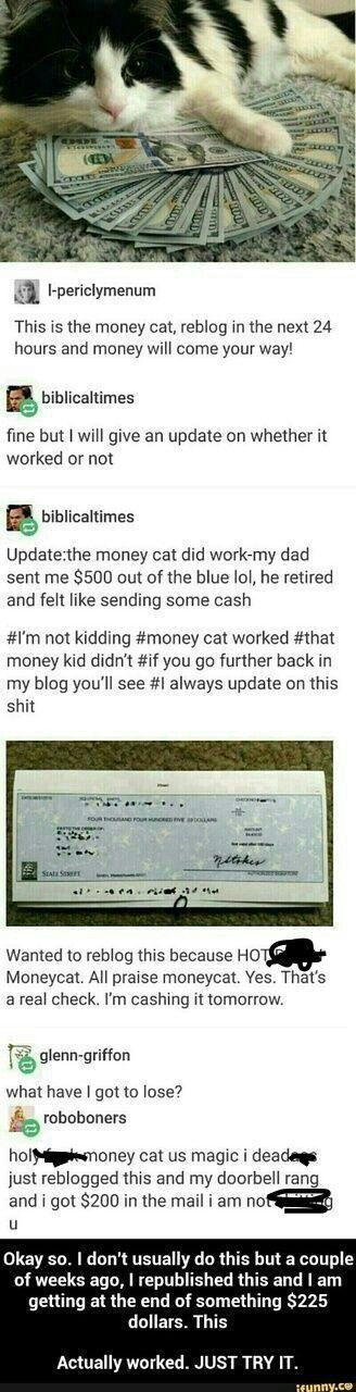 Okay. But look how cute that cat is. Money or no I'll re pun this bar everyday