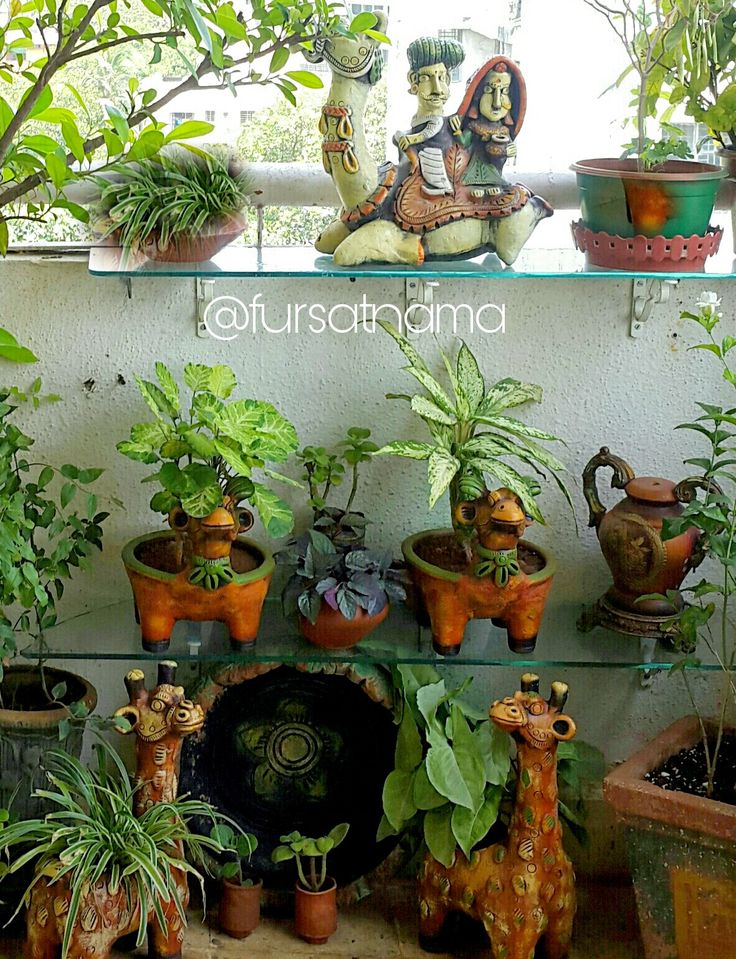 Terracotta planters and artefacts add so much character to this herbs and shrub corner of my balcoy
