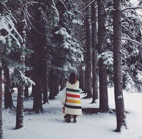 walking in the snowy woods