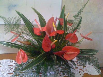 Grande Amor de Deus: Arranjos de Flores                              …
