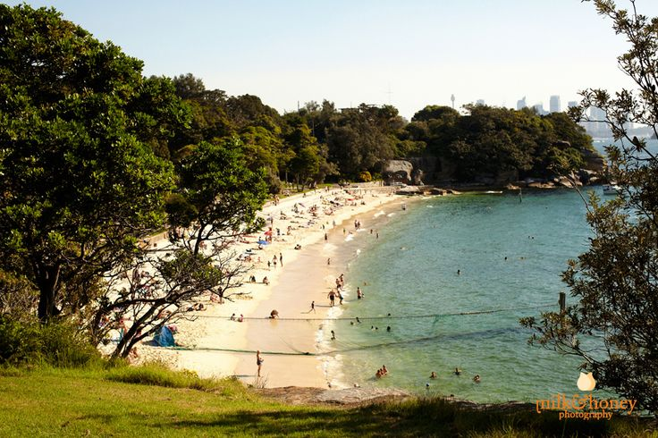 Shakespeare's Point with view of Shark Beach, Vaucluse, Sydney