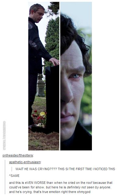 Aww Sherlock. You weren't the only one crying. We all were. I cannot watch that scene without crying. <-- I WILL CRY ALL THE TEARS ENOUGH TO WATER A ROSE, FLOOD TWO PONDS, AND A RIVER!!!