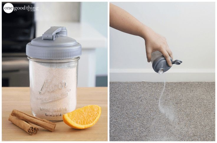 How To Make A Cheap & Natural Deodorizing Carpet Powder - One Good Thing by Jillee