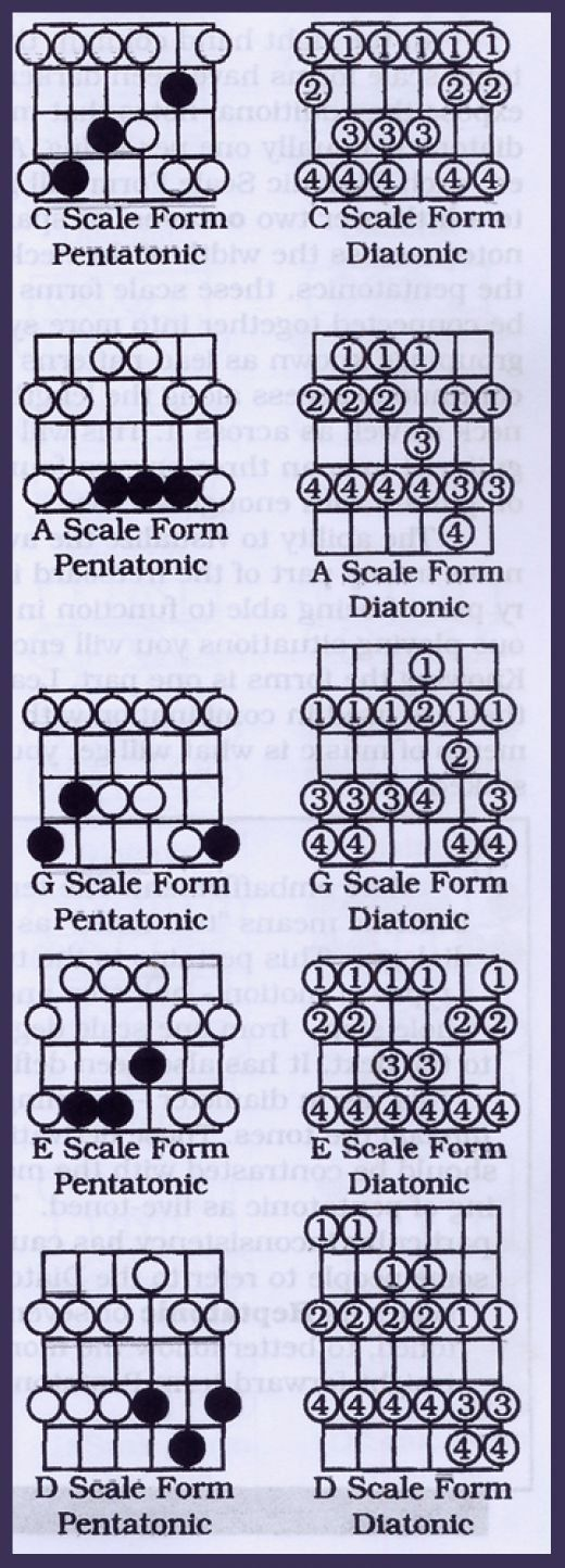 The diatonic scales are 7 note patterns that in a sense are extensions of the pentatonic patterns. They require a bit more work to learn than the pentatonic scales but are well worth the investment to avoid 'pentamania' where lead guitar starts sounding 'samey' and predictable.