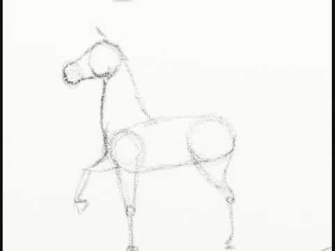 Ms de 25 ideas increbles sobre Como dibujar un caballo en