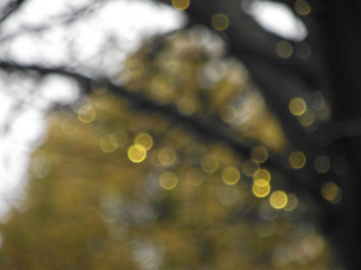 quand les champs elysées passent en lumières d'hiver :)