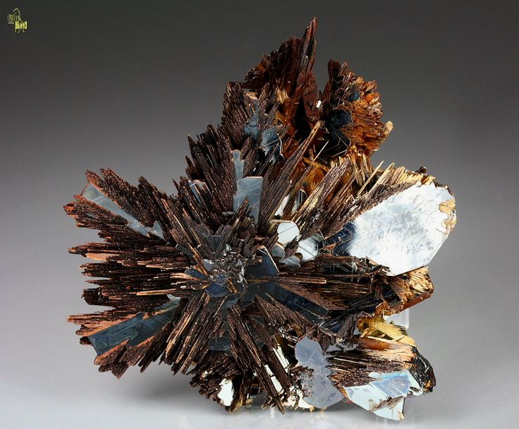 Hematite with Rutile.  Unusual presentation of the rutile blades.