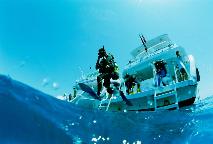 Scuba Diving packages in South Africa including Cape Town, Langebaan, Garden Route, Durban, Sodwana Bay, Aliwal Shoal... www.dirtyboots.co.za #dirtyboots #adventuresouthafrica