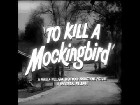how to kill a mockingbird funny parts