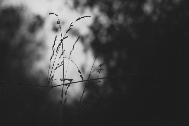 Bad mood by Mynk Krystal on 500px