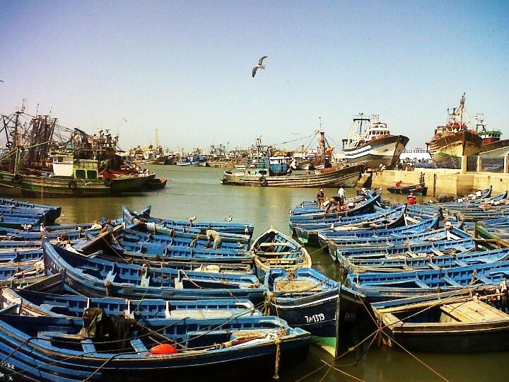 Blue fishing boats at Porta de la Marina, Essaouira.