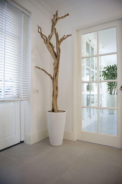 Decoraties, decoraties zijde, decoraties kunst, Magnolia takken, Bloesem takken - B.art en Blooms Interieurbeplanting en Decoraties Ermelo