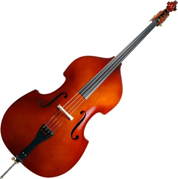 a study on the musical instrument bass Best musical instruments  18 harp the harp is a stringed musical instrument that has a number of individual strings  i would encourage them to study bass thumb .
