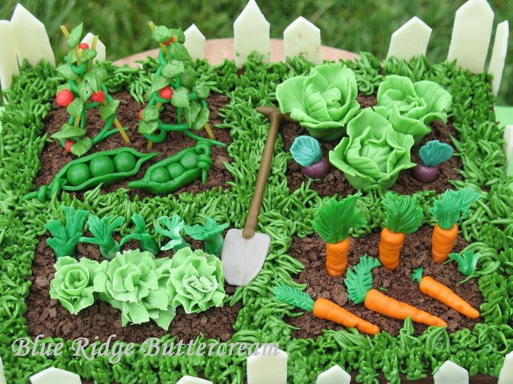 how to layout vegetables in garden | Vegetable garden cake with white fence and shovel. Too cute!