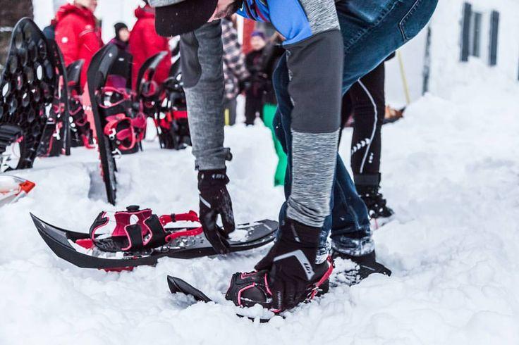 いいね!34件、コメント1件 ― Garneauさん(@garneau)のInstagramアカウント: 「With a good portion of #Canada & the Northeast of #Merica under the snow again this morning (thanks…」