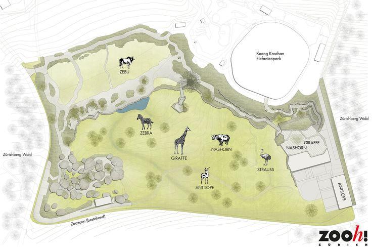 Planung: Lewa Savanne, Zoo Zürich | vetschpartner Landschaftsarchitekten AG