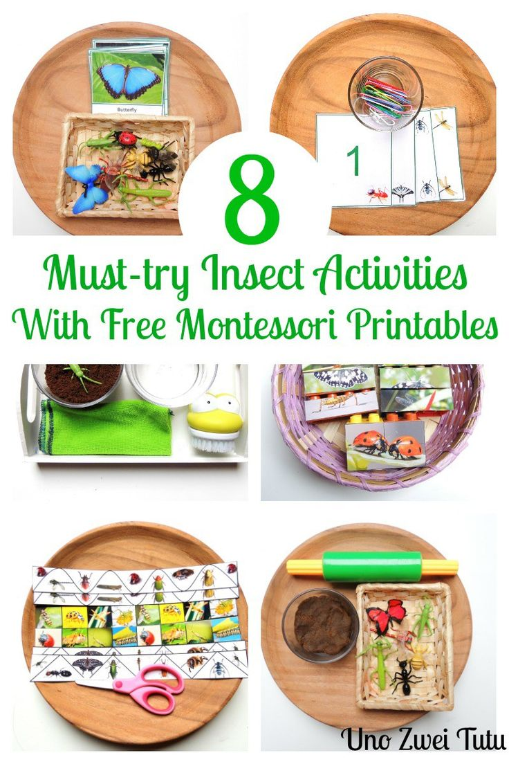 8 Montessori inspired insects activities for toddlers and preschoolers. With free printables in spanish and english. Includes a lego puzzle, 3 parts matching cards, counting cards, cutting strips, practical life and playdough play.
