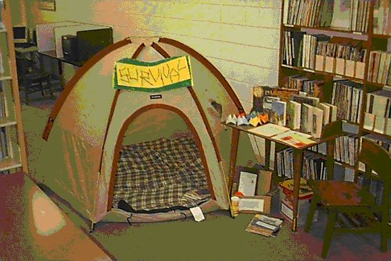Canada Unit  - cute setup for teaching a survival unit to accompany the novel, Hatchet