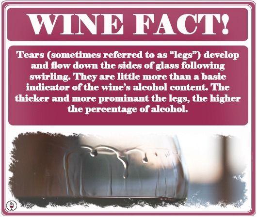 Wine Fact! Wine Legs