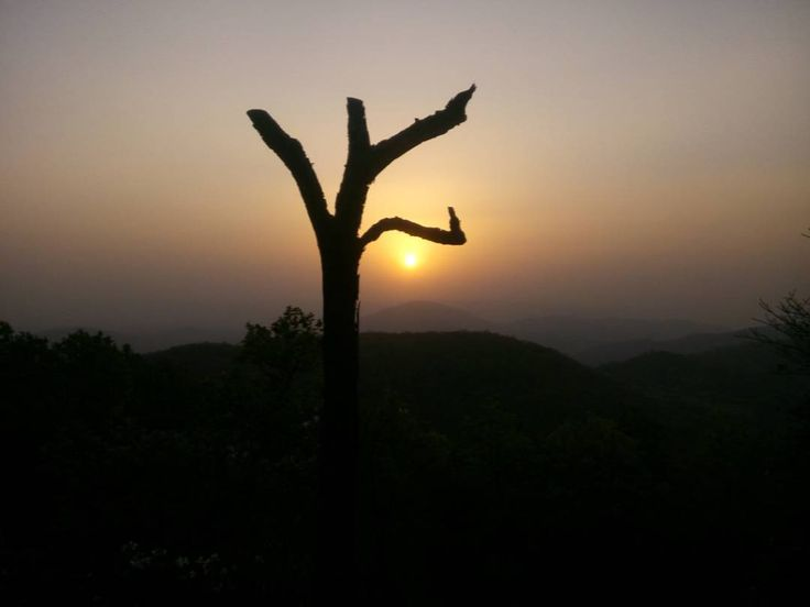 Good Evening Latehar #incredibleindia #latehartourism #jharkhandtourism #netarhat #naturalbeauty #tour #travel #sunset