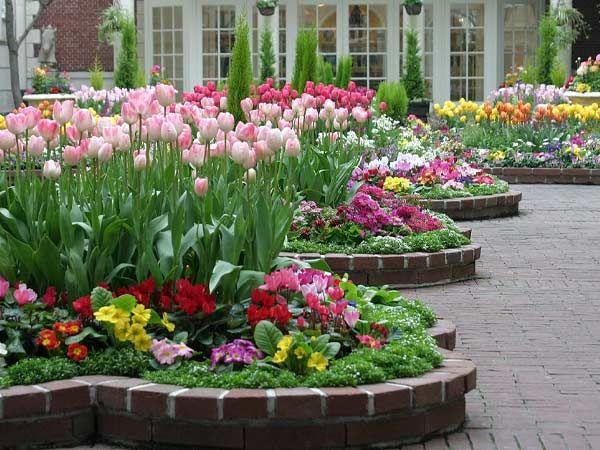 Oltre 25 fantastiche idee su progettazione di giardini su for Idee per giardini piccoli