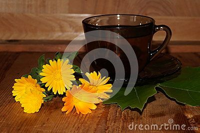 Medicinal plants - calendula, marigold (Calendula officinalis)