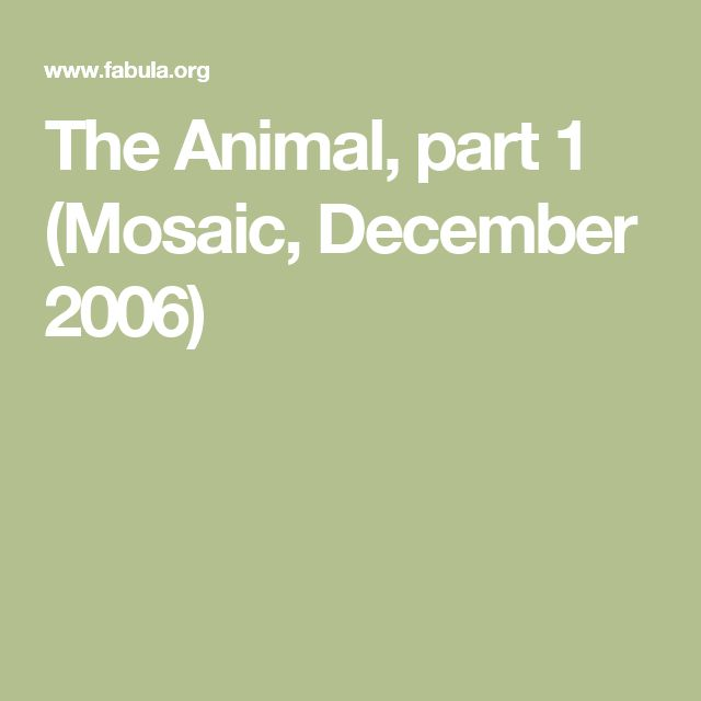 The Animal, part 1 (Mosaic, December 2006)