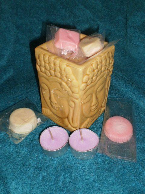 Burner, 2 medium melts, 2 candy melts and 2 tea light candles. $20