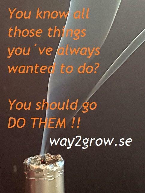 Ta tag i dina drömmar idag så att du når dem snabbare. www.way2grow.se