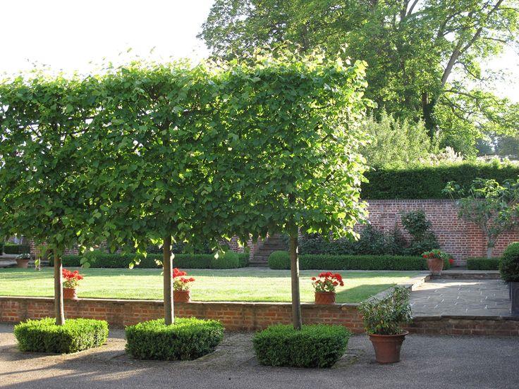 411 besten Garten Bilder auf Pinterest Gartenarbeit - garten neu gestalten vorher nachher