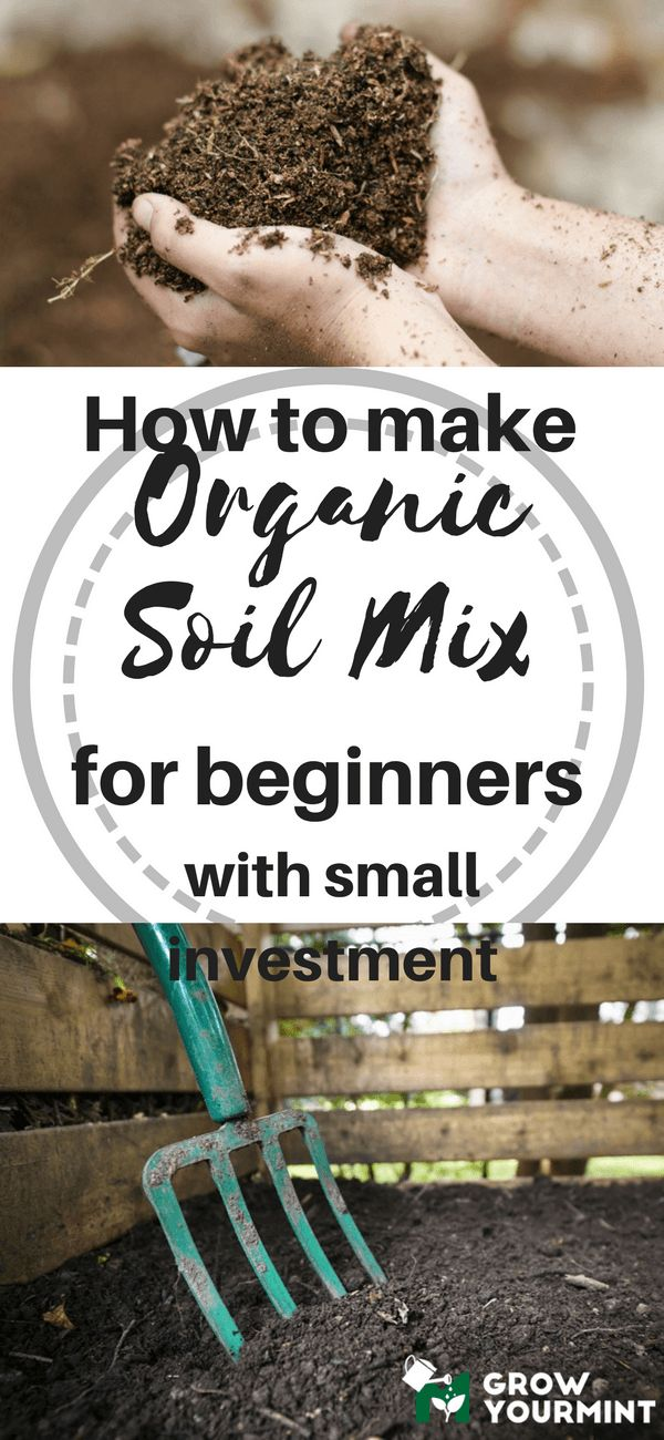 Follow the instructions in this article, and you will benefit, without a doubt. You will learn how to make easy organic soil mix for beginner, with small investments. This can save you a lot of money in the long run. #organic#garden#gardening#growyourmint.com