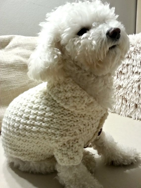 Dog Clothes Off White Dog Sweater with buttons by BubaDog on Etsy