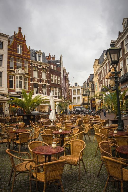 The Hague / Netherlands