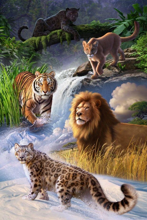 Animal Illustrations by Jerry LoFaro                                                                                                                                                     Más