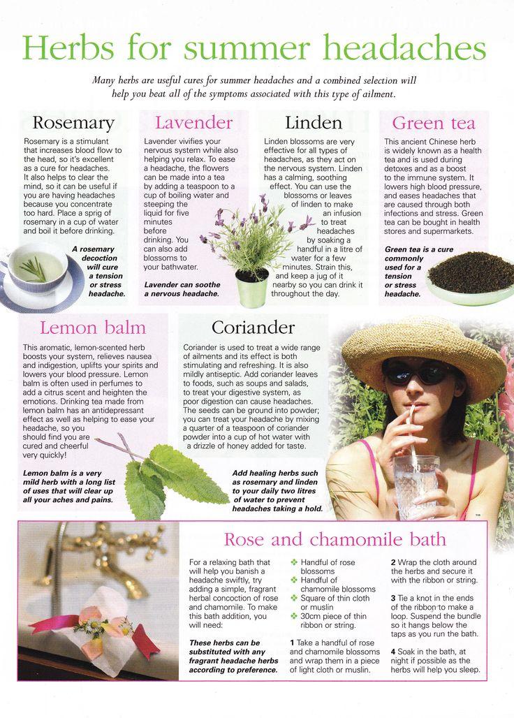 Herbs:  #Herbs for Summer Headaches.