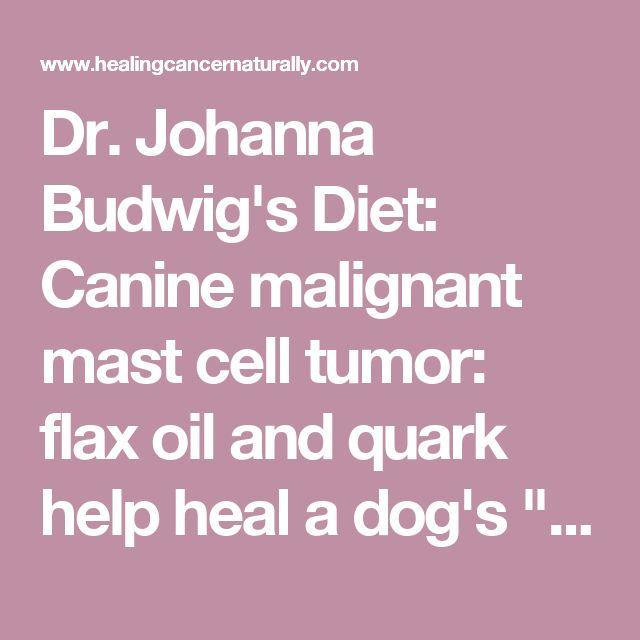 "Dr. Johanna Budwig's Diet: Canine malignant mast cell tumor: flax oil and quark help heal a dog's ""incurable"" cancer"