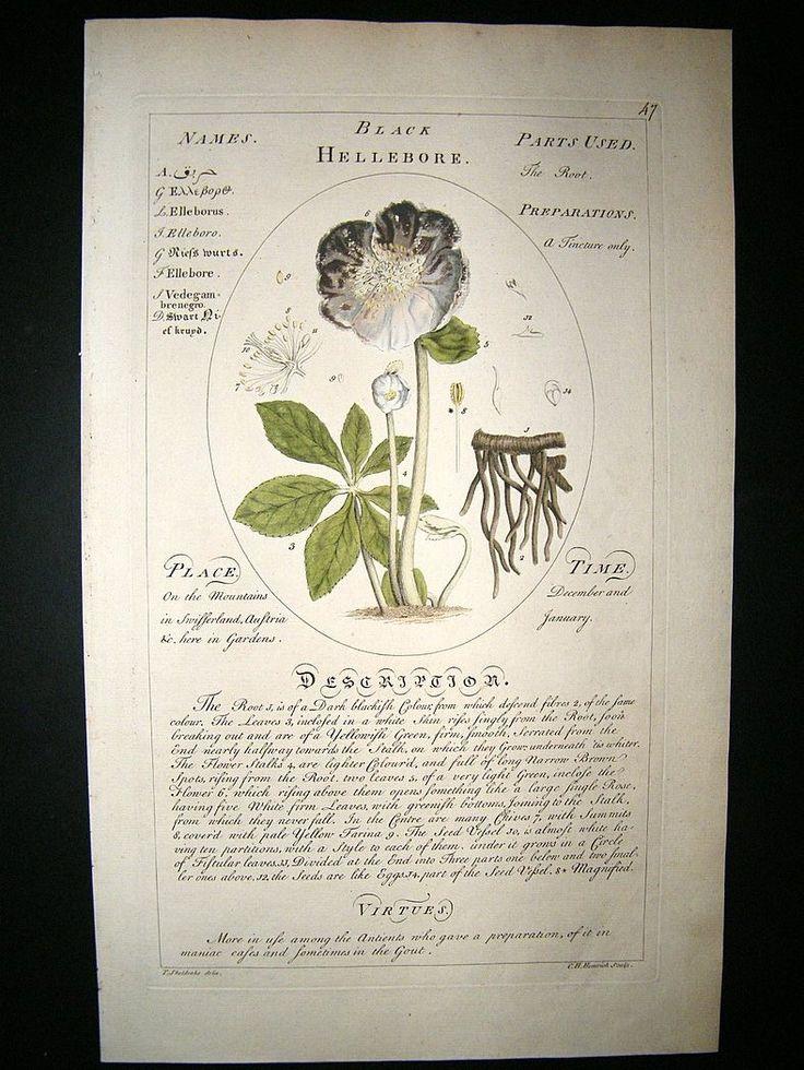 botany books pdf free download