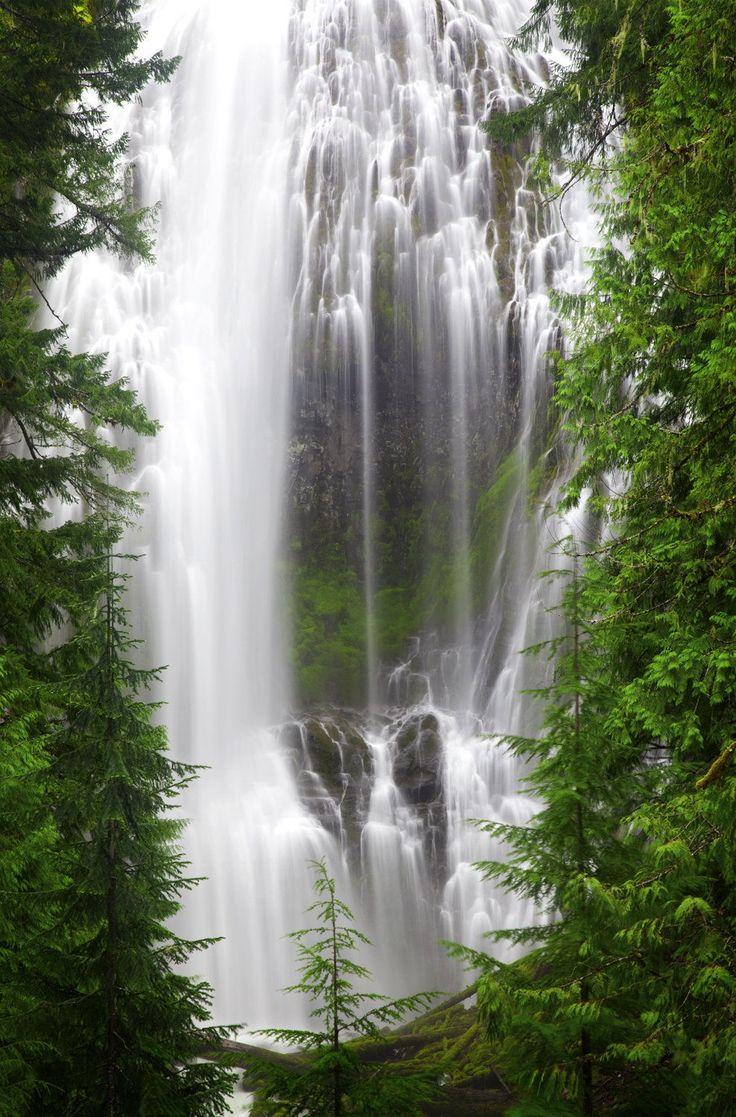 Proxy Falls Oregon USA // Denny Thurston