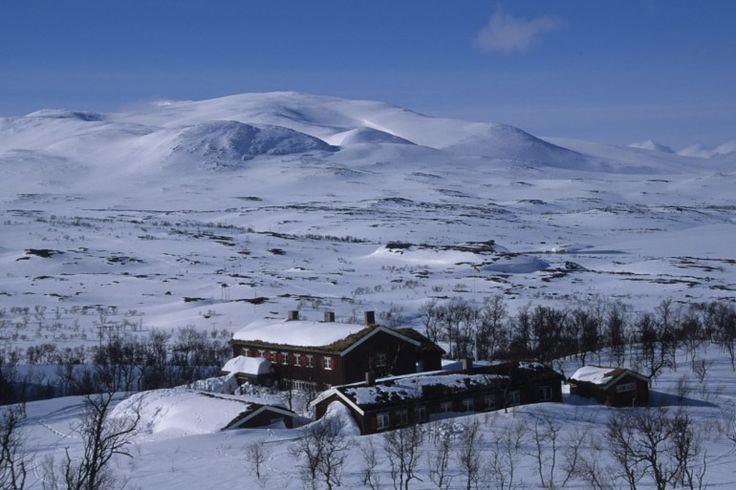 Nedalshytta - Sylan. trektocht op ski's in maart 2014. alleen de zelfbedieningshut was open. gewassen in de ijskoude beek.