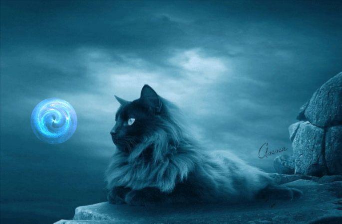 Animazione Fluffy gatto è sdraiato su una roccia su uno sfondo di cielo nuvoloso e guardando la sfera magica, SIFCO Fluffy gatto è sdraiato su una roccia su uno sfondo di cielo nuvoloso e guardando la sfera magica