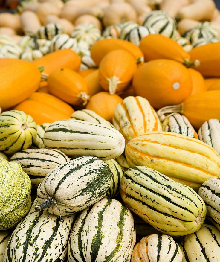 Winter squash at the farmer's market | Learn how to identify and prepare eight popular winter squash varieties.